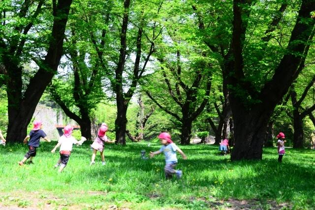 自然の中で遊ぶ様子