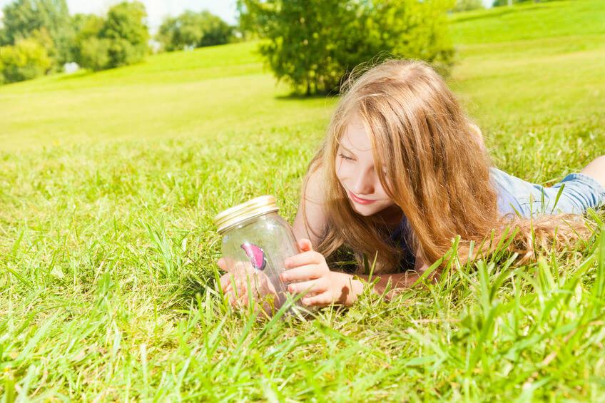 夏休みの自由研究は子供のやる気を引き出す