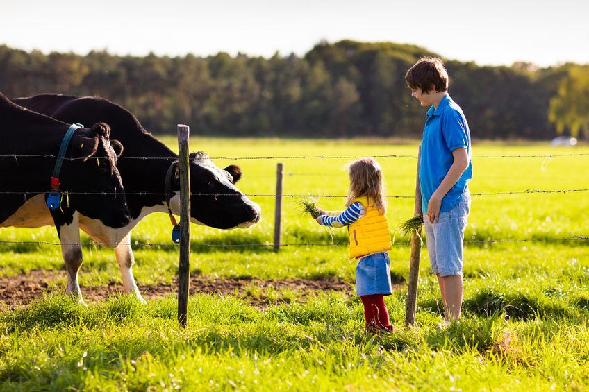田舎の子育てのメリット