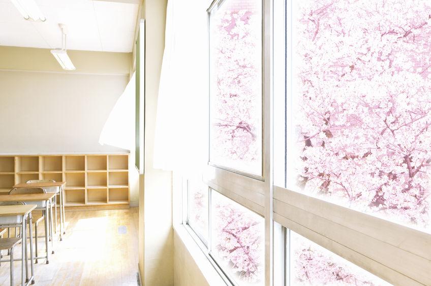 慶應幼稚舎、早実初等部、筑波小学校に合格