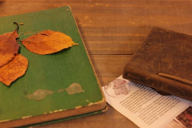 葉っぱスクラップ
